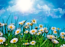 Как_улучшить_обмен_веществ_летом1