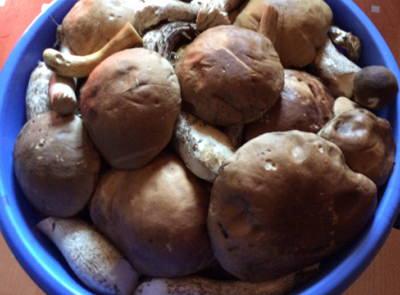 Рецепты вторых блюд из мяса для праздничного стола
