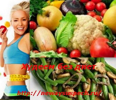 diet_net