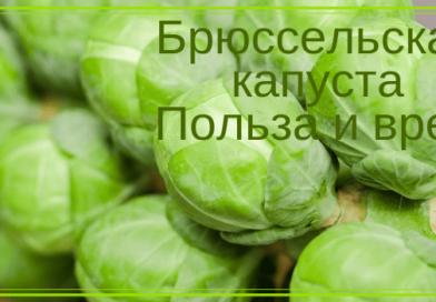 vkusno_polezno
