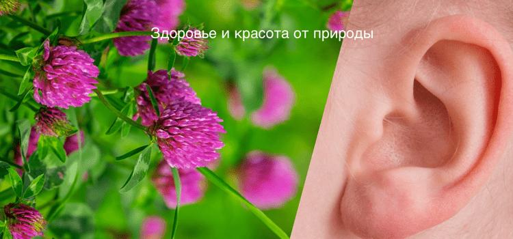 Народные_рецепты_при_атеросклерозе