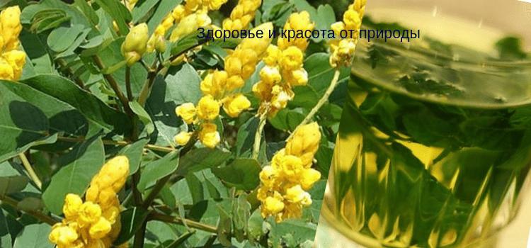 Лечение_боли_в_суставах_народными_рецептами